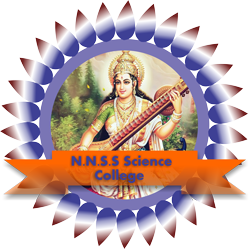Nripati Narayan Singh Smarak Group Of Science College